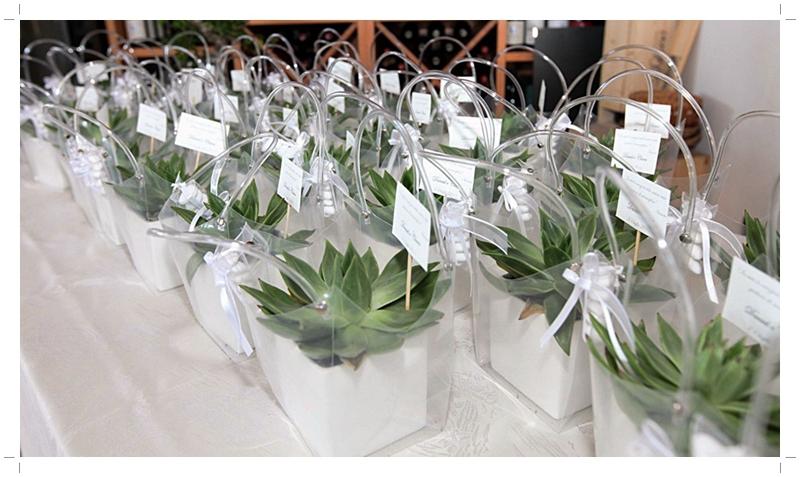 Confezionare Piante In Vaso : Bomboniere con piante grasse