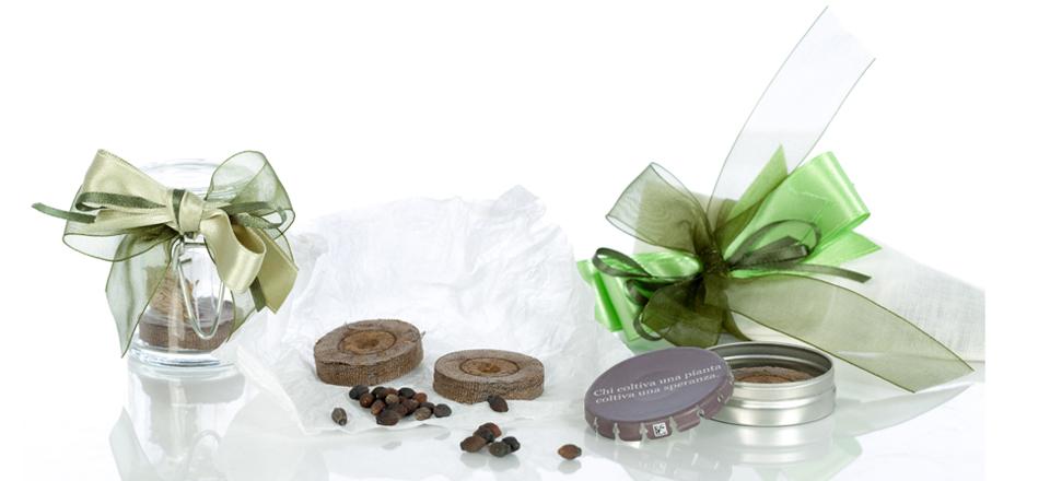 Bomboniere con semi. Originali idee regalo e creatività esclusiva 40fd0fcb7b55